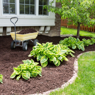 MULCH & BEDDING